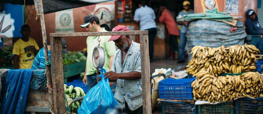 Punta Cana Ausfluege Bananen