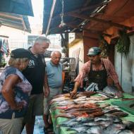 Ausfluege Punta CAna fischig